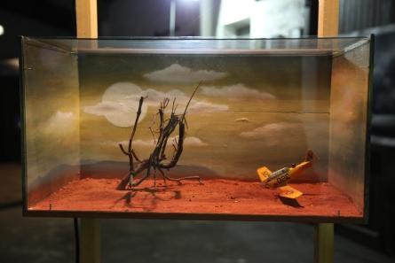 Woestijnlanding